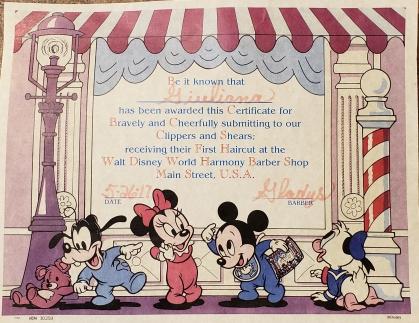 Harmony certificate.jpg